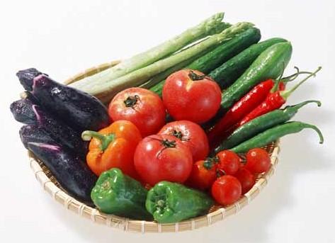 都市农业生态园——青少年食品安全教育新阵地